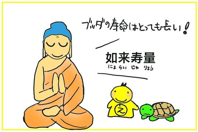 如来寿量(にょらいじゅりょう)「分別功徳品第十七」(ふんべつくどくほん)法華経(ほけきょう)